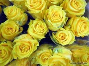 romantic wedding flowers. yellow roses