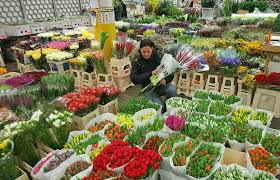 New covent garden flower market, stand display